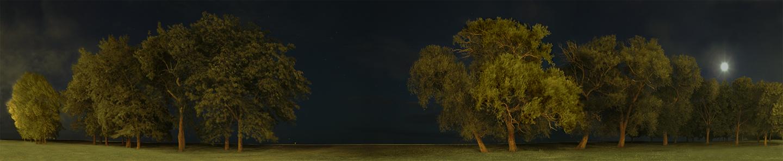 """Belmont Harbor in Moonlight, 2004 18"""" x 72"""""""