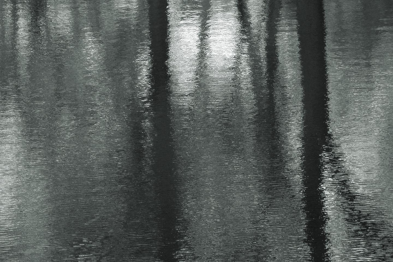 "Central Park: New York No. 1, 2003 27"" x 40"""