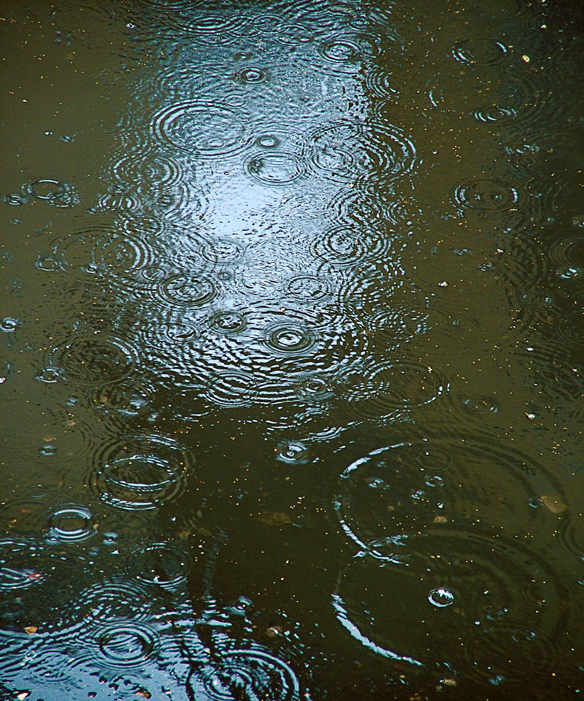 "Rain on Chisty Pereoulok No. 6, 2008 28"" x 24"""