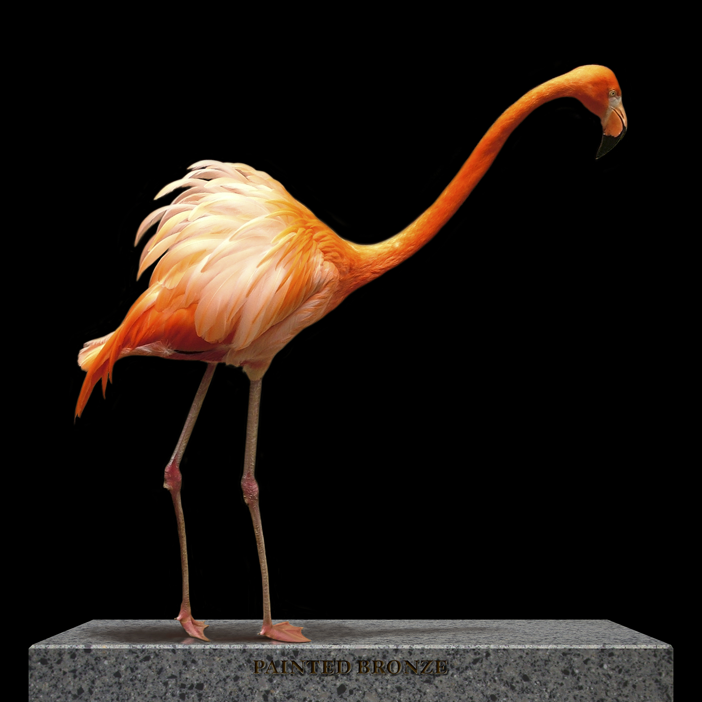 "Painted Bronze Flamingo, 2005  40"" x 40"""