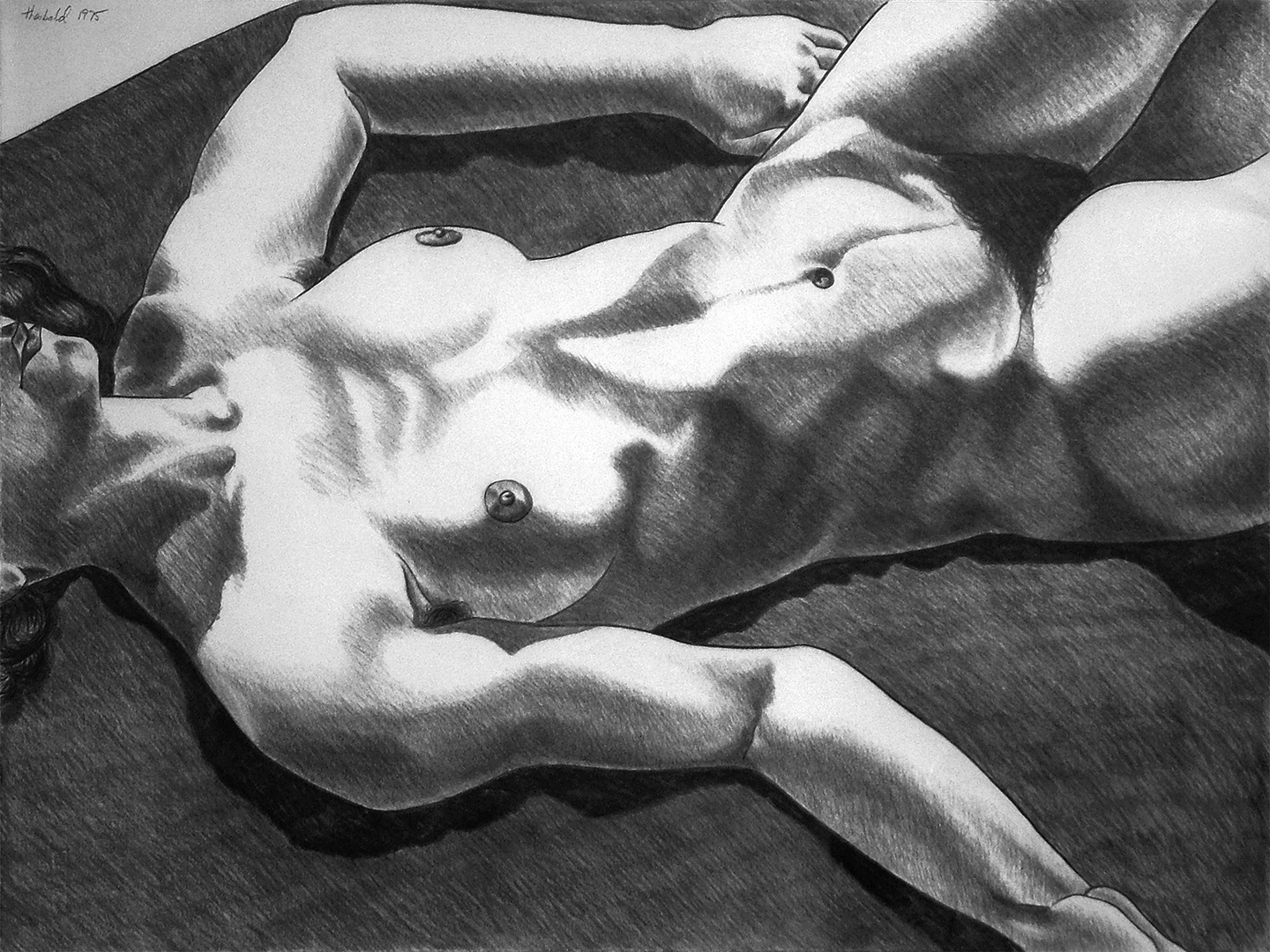 "Model on Brown Rug, 1975  20"" x 26"" Charcoal on Rives"