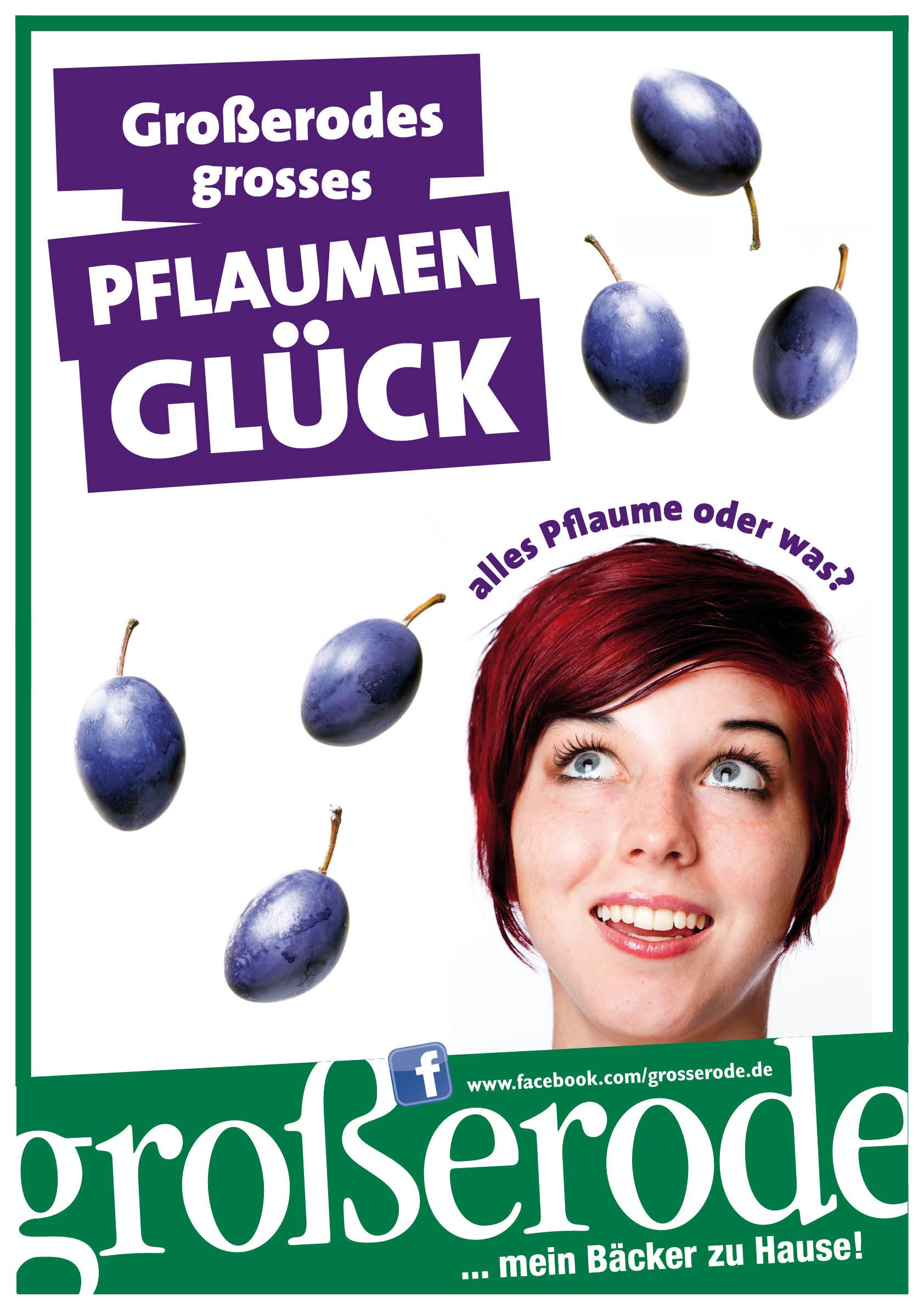 20140722_Grosserode_Pflaumenaktion_Web.jpg