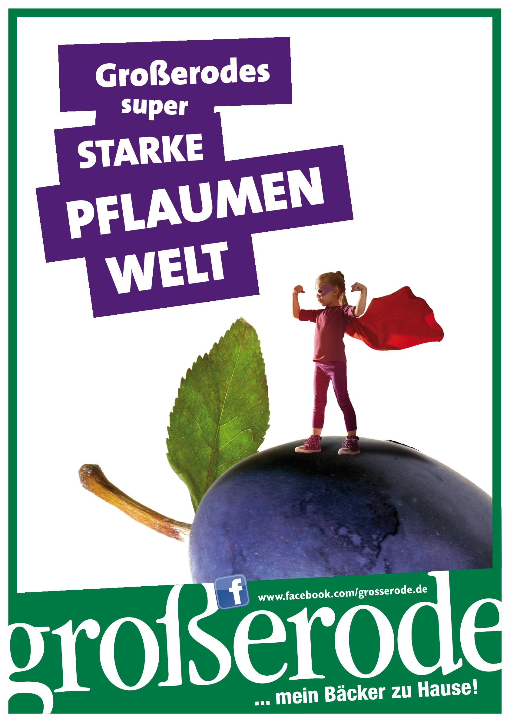 20160511_Grosserode_Pflaumenaktion_PlakatA1_DRUCKDATEN.png
