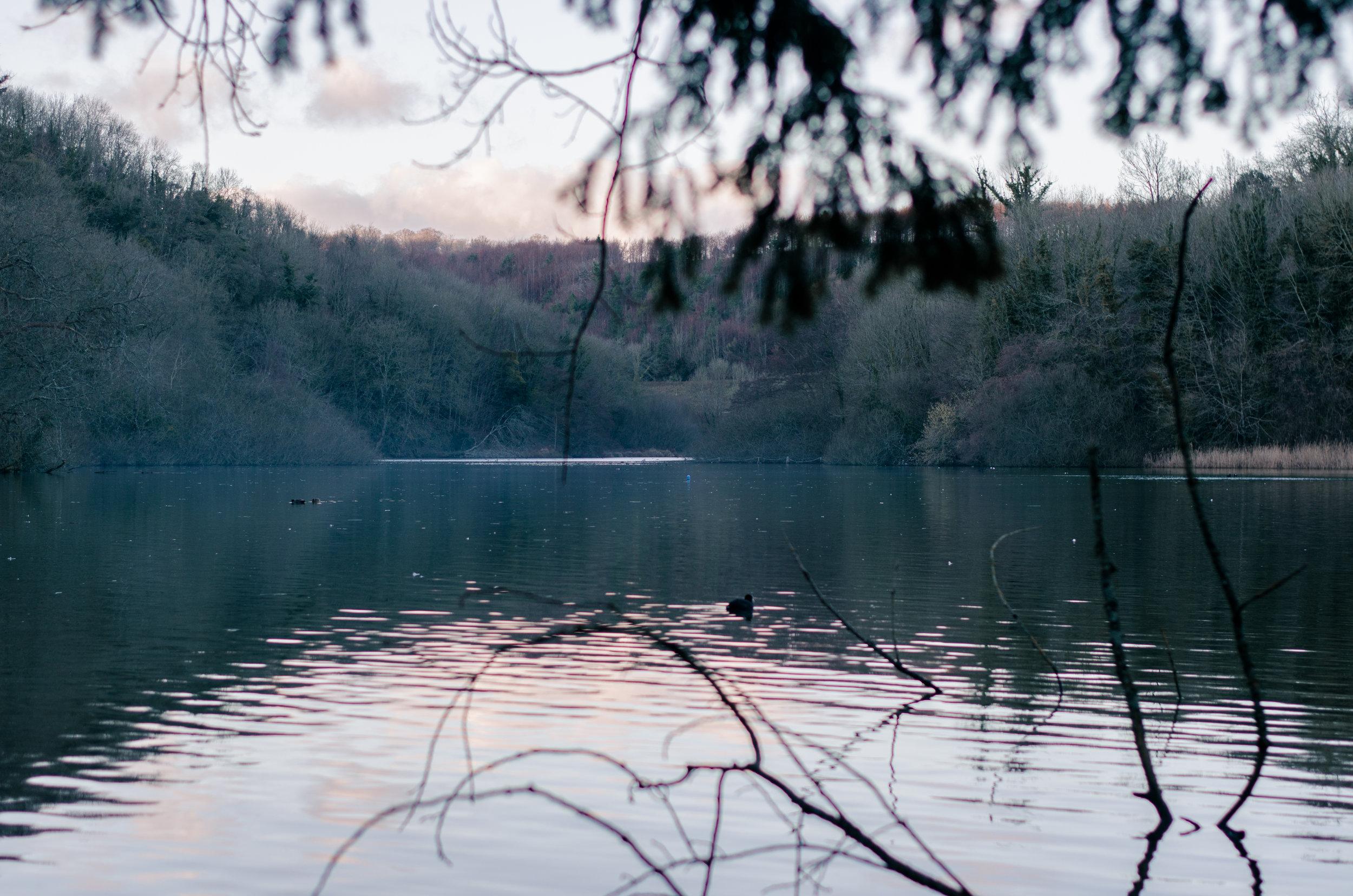 Arundel - Aiste Saulyte Photography - 2018-01-05-71.jpg