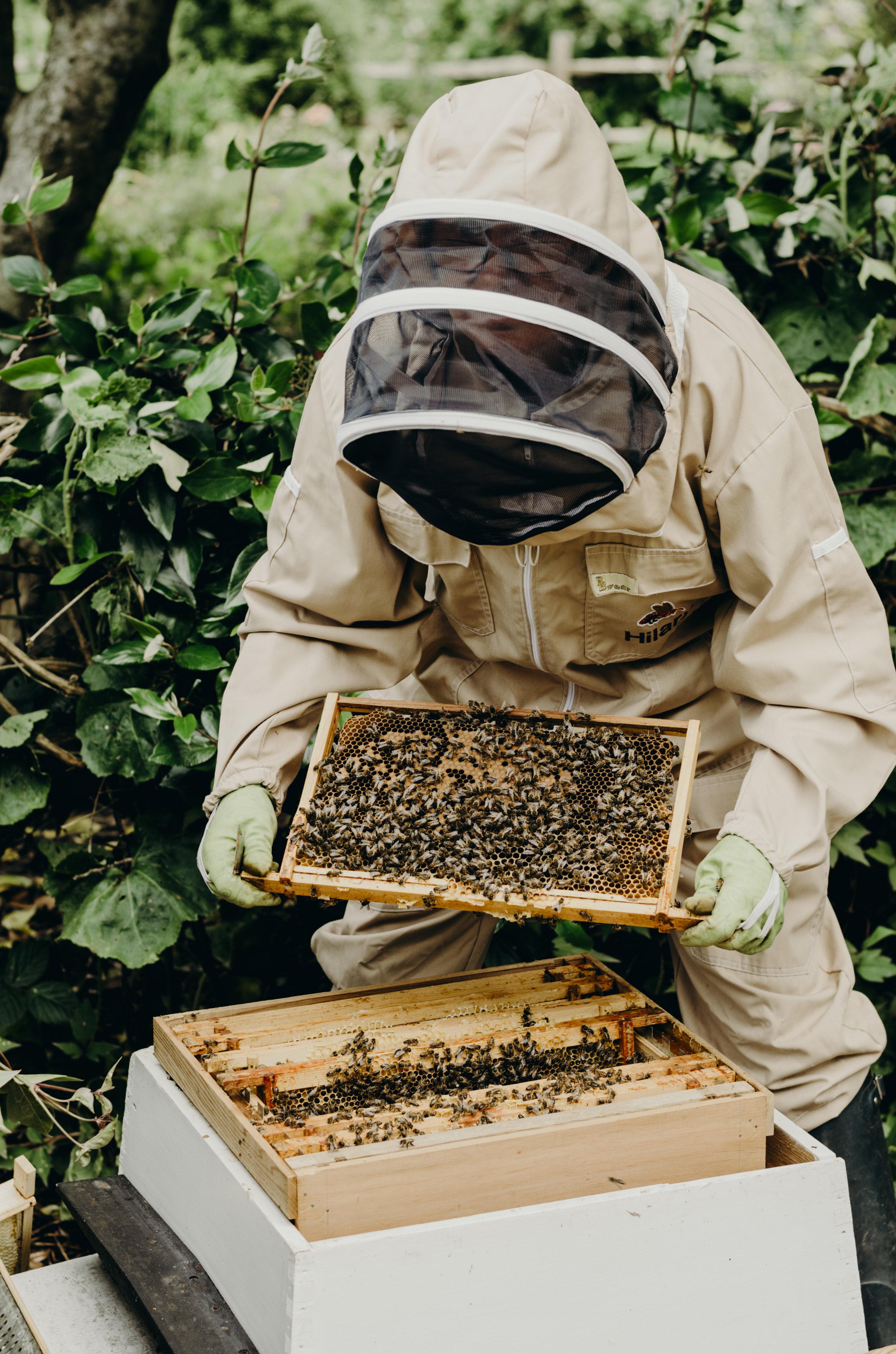 Beekeepers_11.JPG