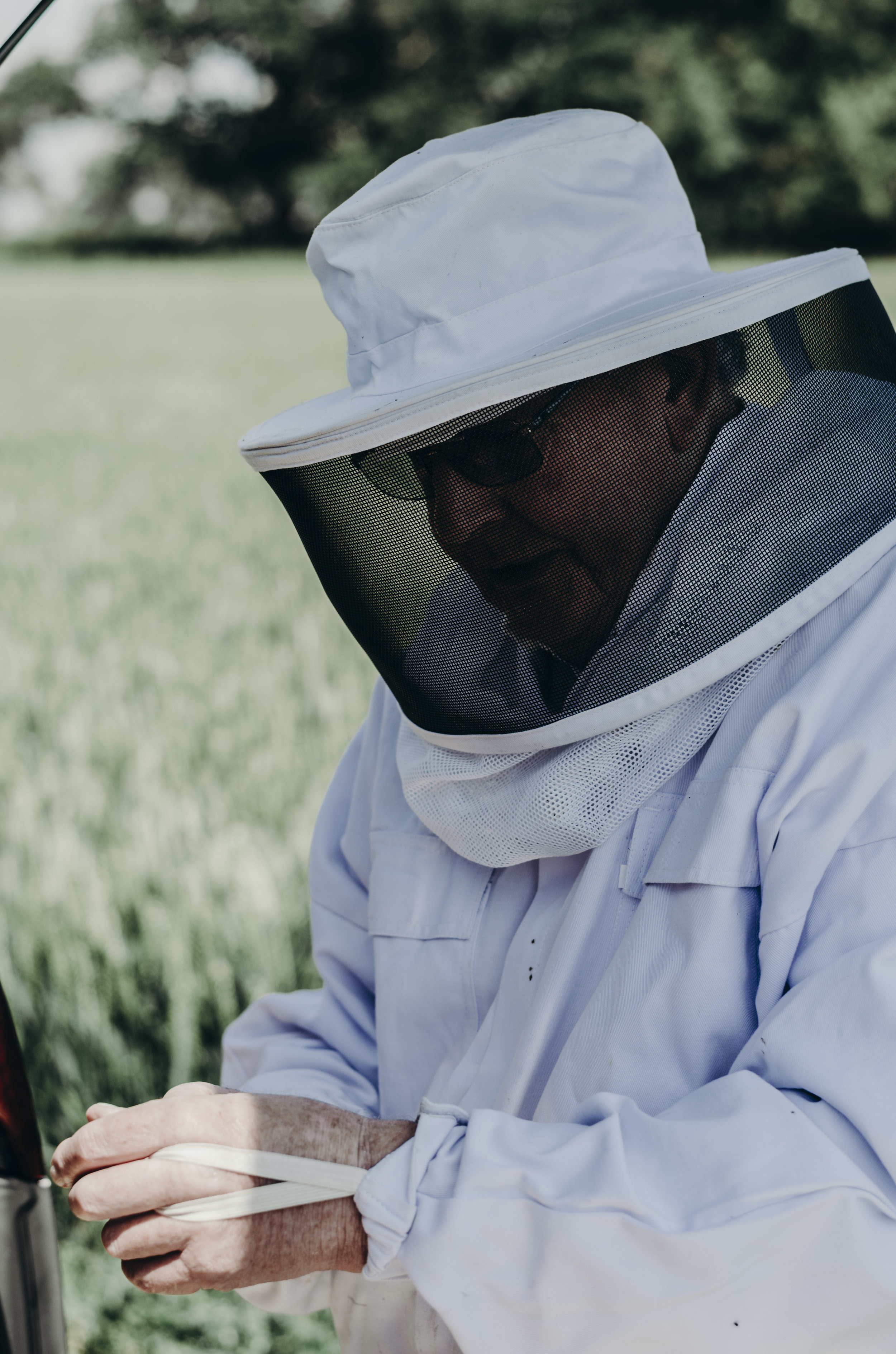 Beekeeping_30.JPG