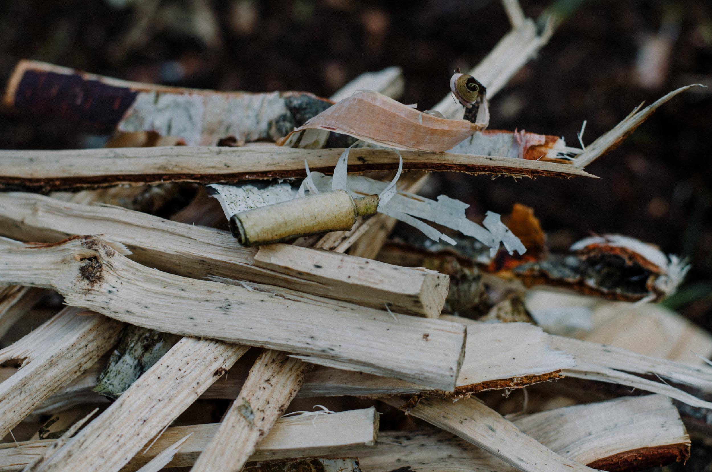 Fire & Wild- Wild Garlic & Campfire Dinner - Aiste Saulyte Photography-102.jpg
