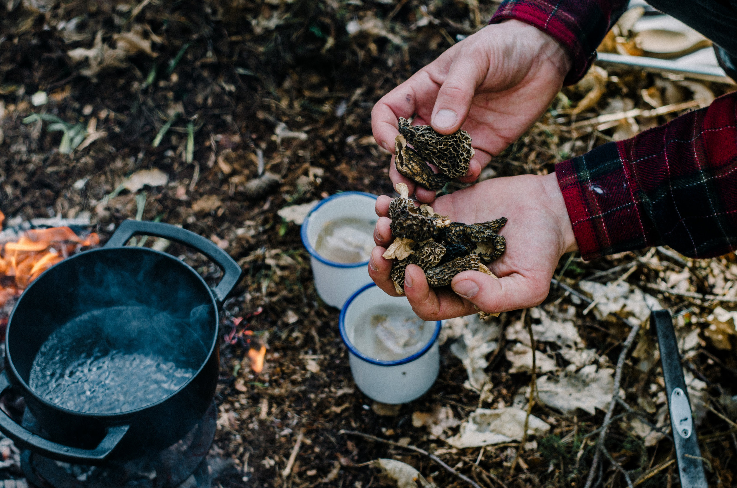 Fire & Wild- Wild Garlic & Campfire Dinner - Aiste Saulyte Photography-177.jpg