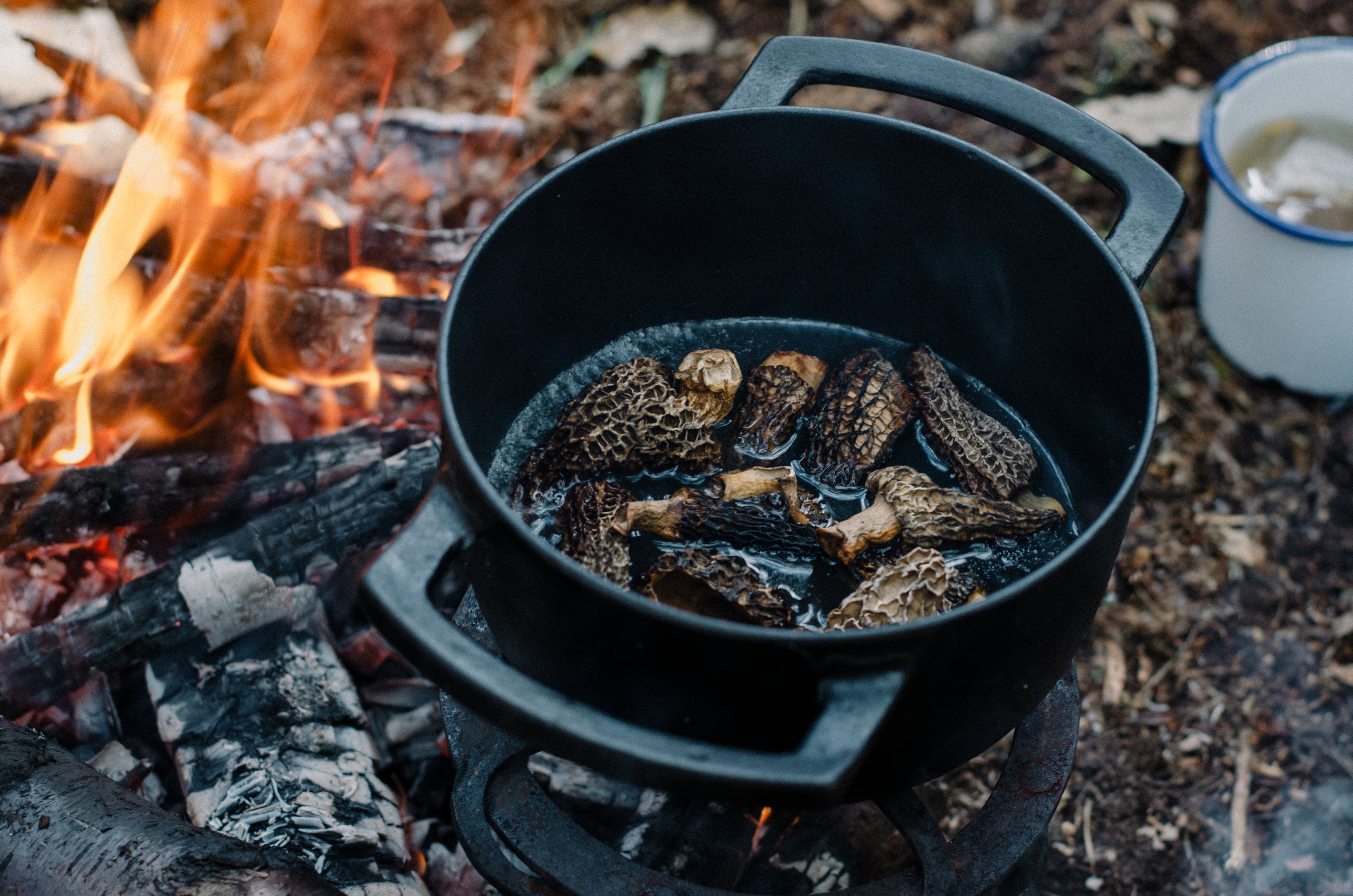 Fire & Wild- Wild Garlic & Campfire Dinner - Aiste Saulyte Photography-179.jpg