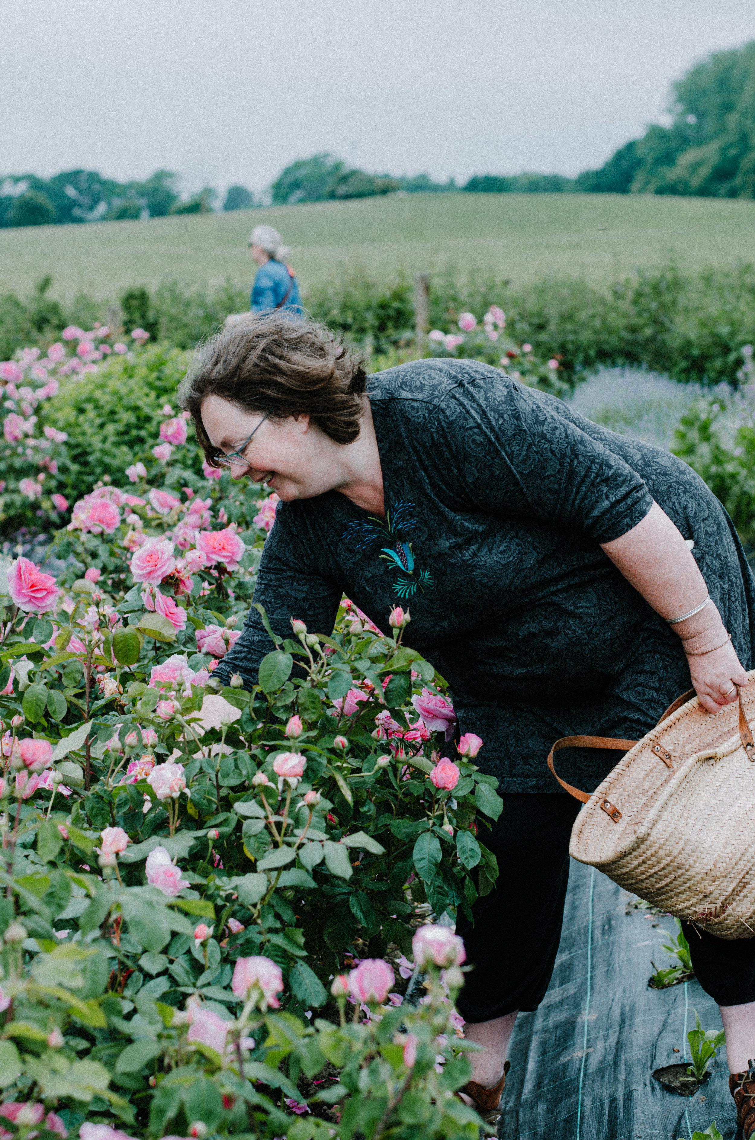 Fierce Botanics - Rose Picking - Aiste Saulyte Photography-29.jpg