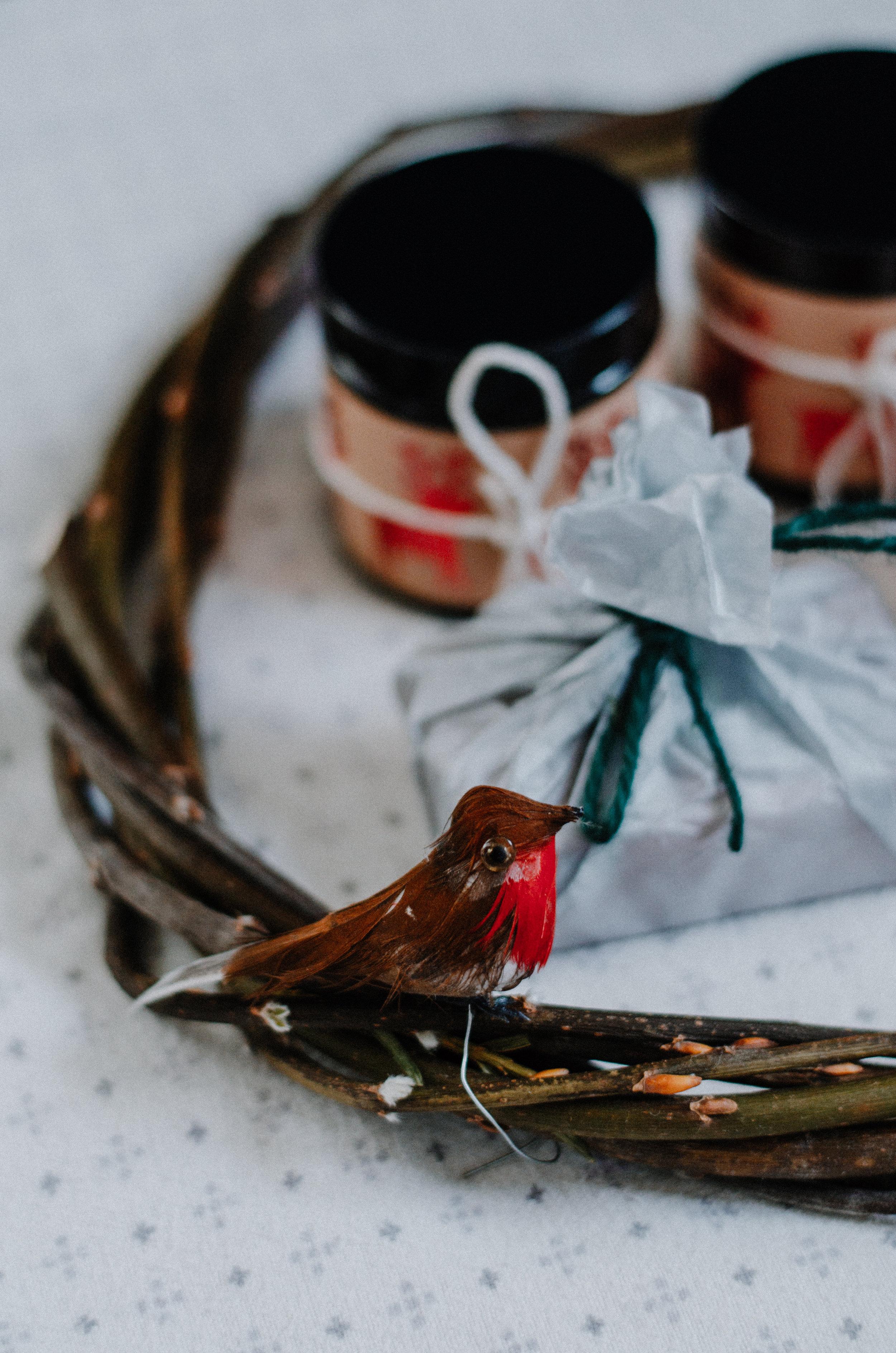 December Nature 2018 - Aiste Saulyte Photography-66.jpg