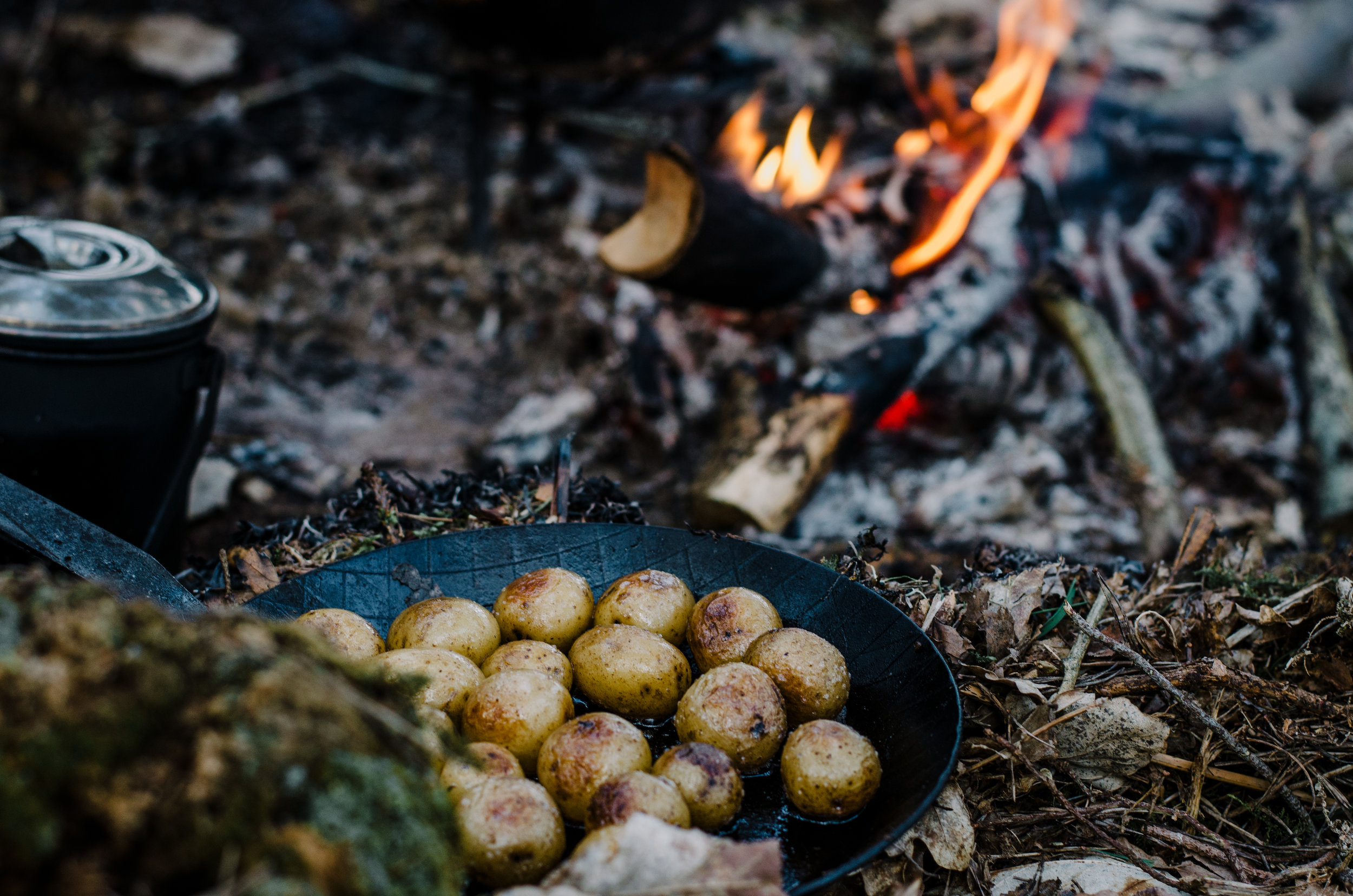 Fire & Wild- Wild Garlic & Campfire Dinner - Aiste Saulyte Photography-300.jpg