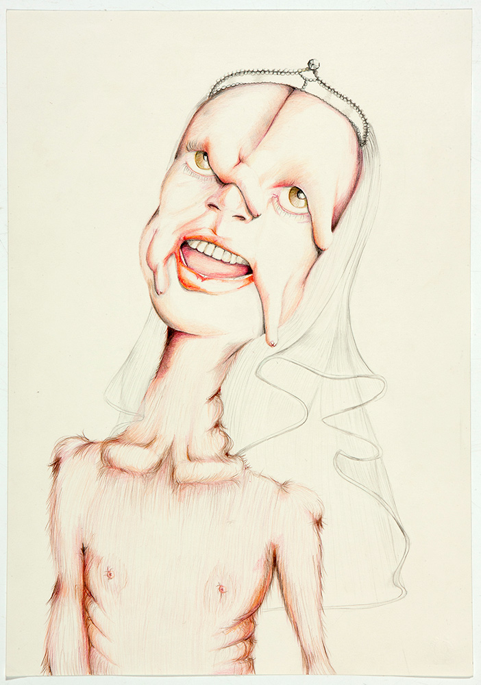 untitled, 2012, 50x35 cm, colour pencil on paper