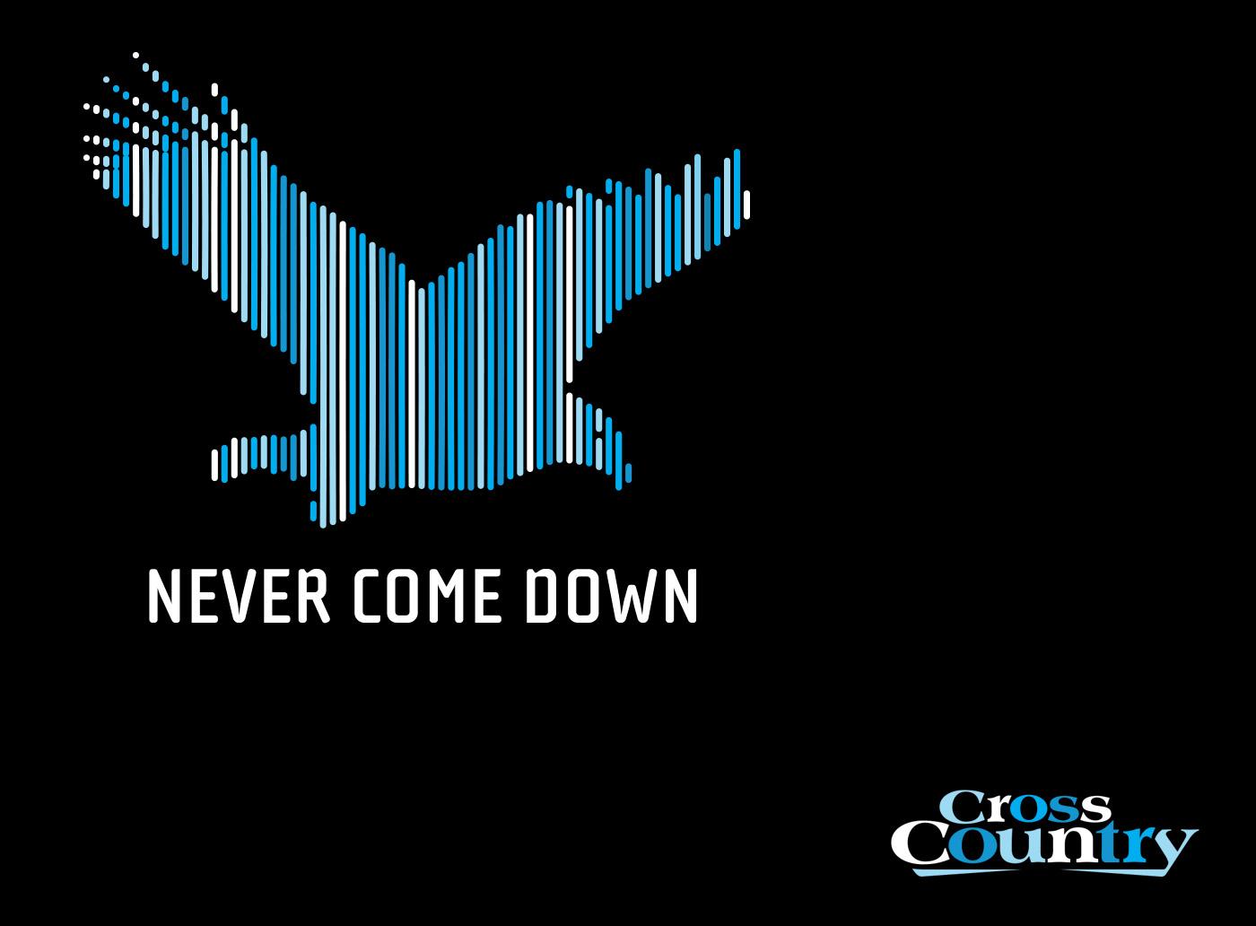 NeverComeDown.jpg