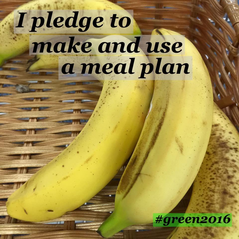 pledge 3.jpg