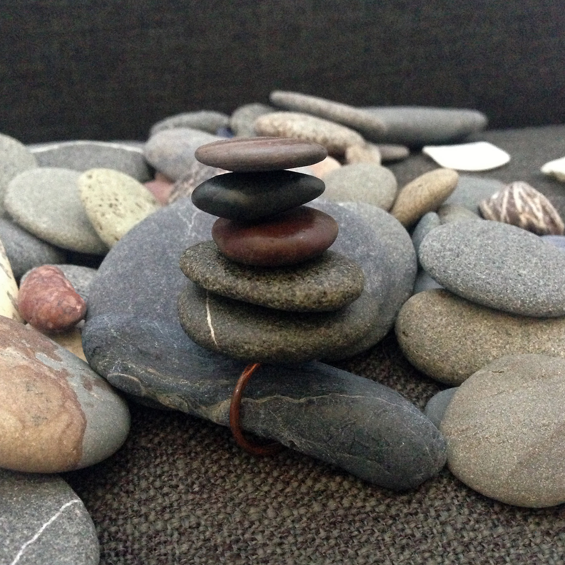 Cairn Ring / Tomales Bay