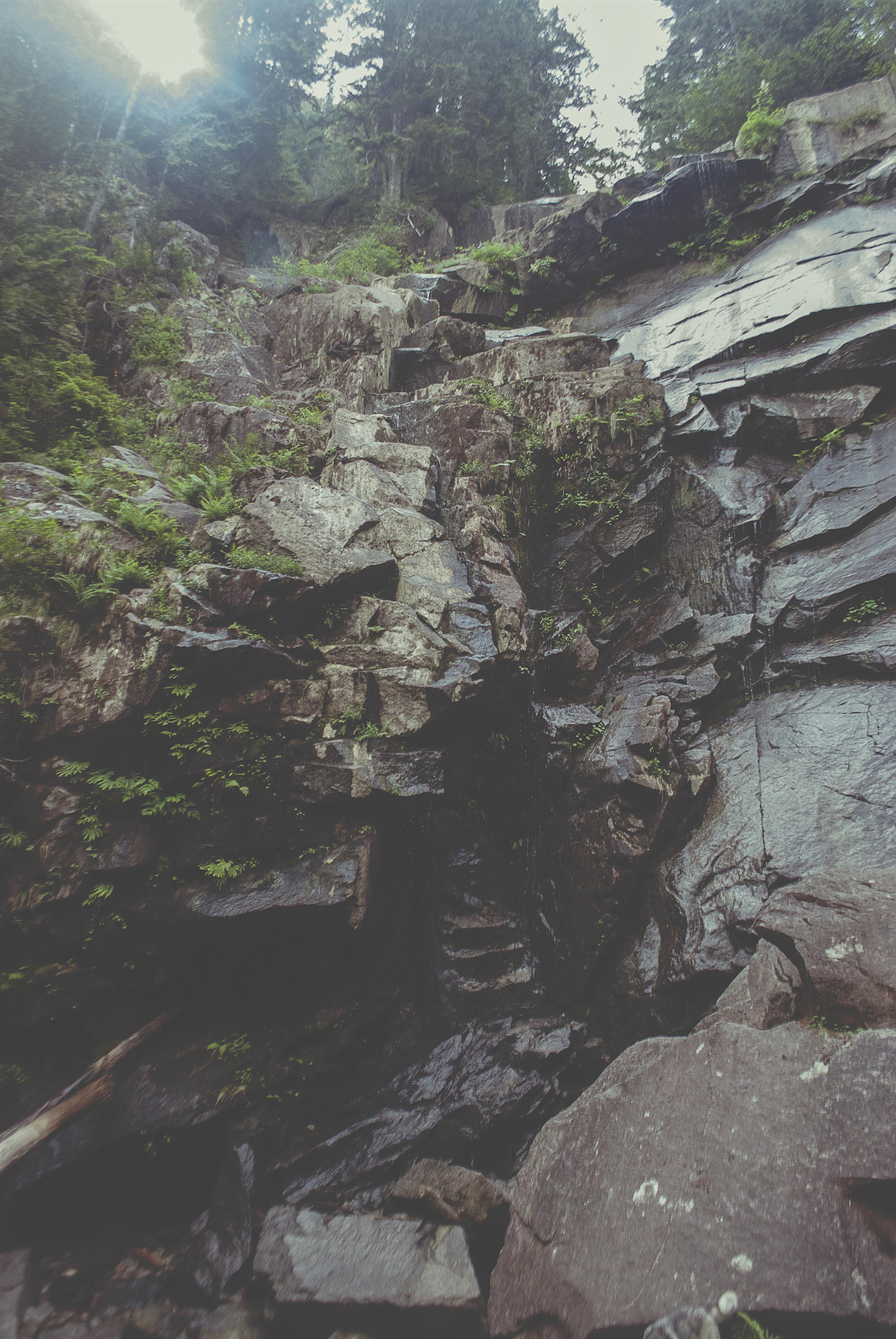 Seattle_dripping_rocks_DSC0136.jpg