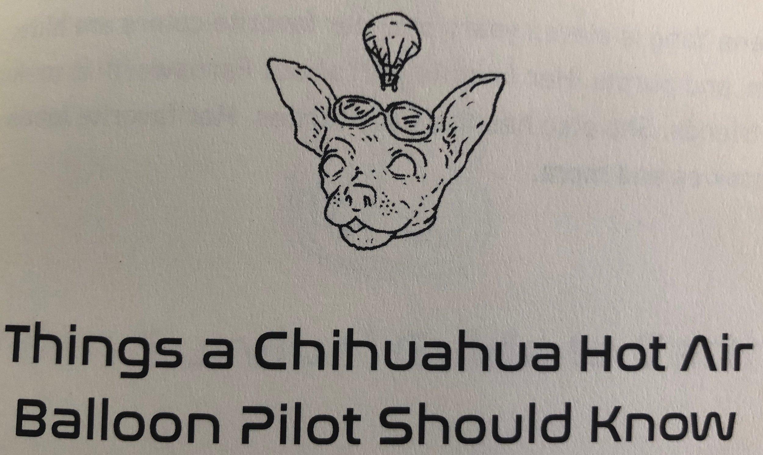 ChihuahuaHotAirBaloon.jpg
