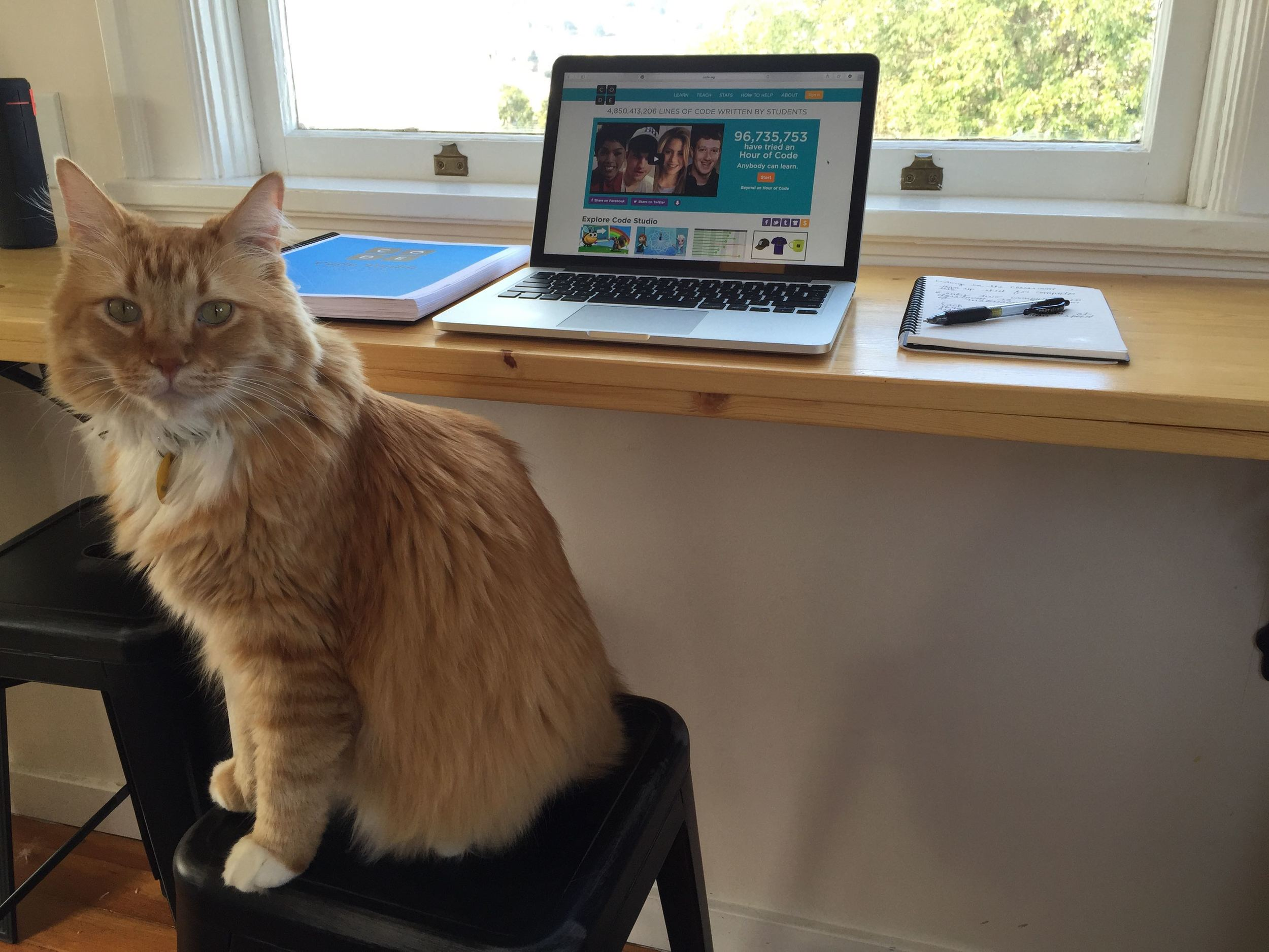 Conan enjoys helping me write up new blog posts.