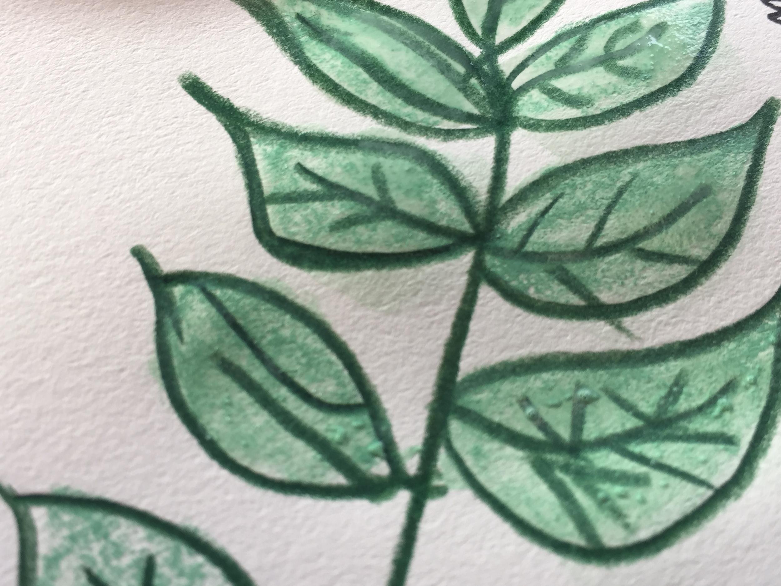 leaf paint 4.jpg