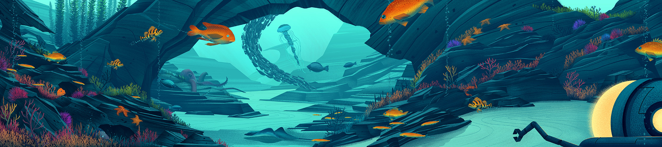 NHM · Seamobile Illustration