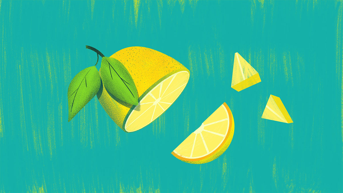 1075_VS_Set_6_Lemon_Slices.jpg