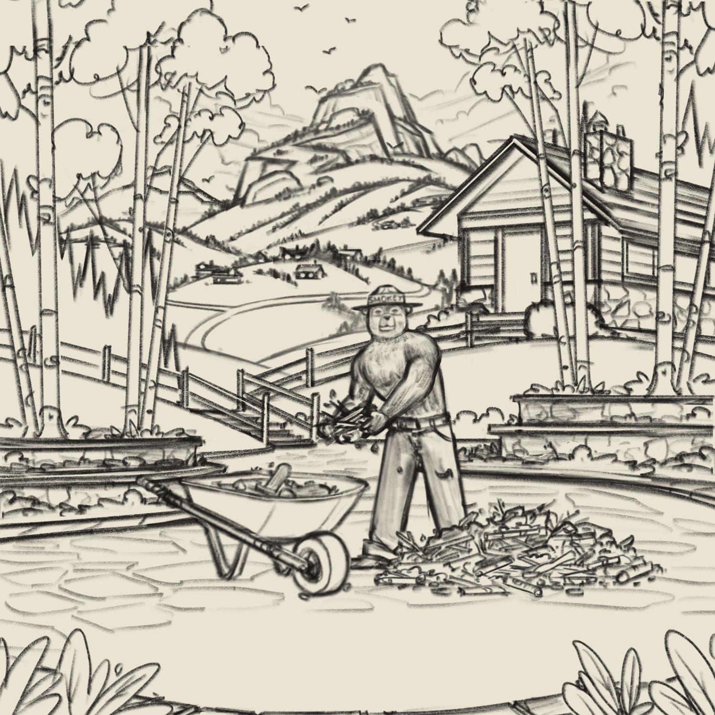 Smokey Bear    Final Sketch