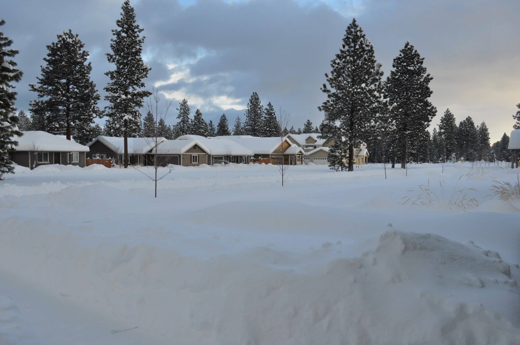 The neighborhood from our front door. You can see the path we dug to the street .