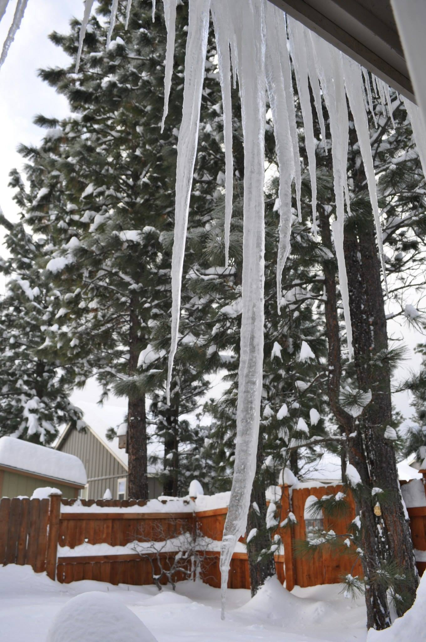 This icicle over our back door eventually grewto 42 inches before Ray knocked it down.