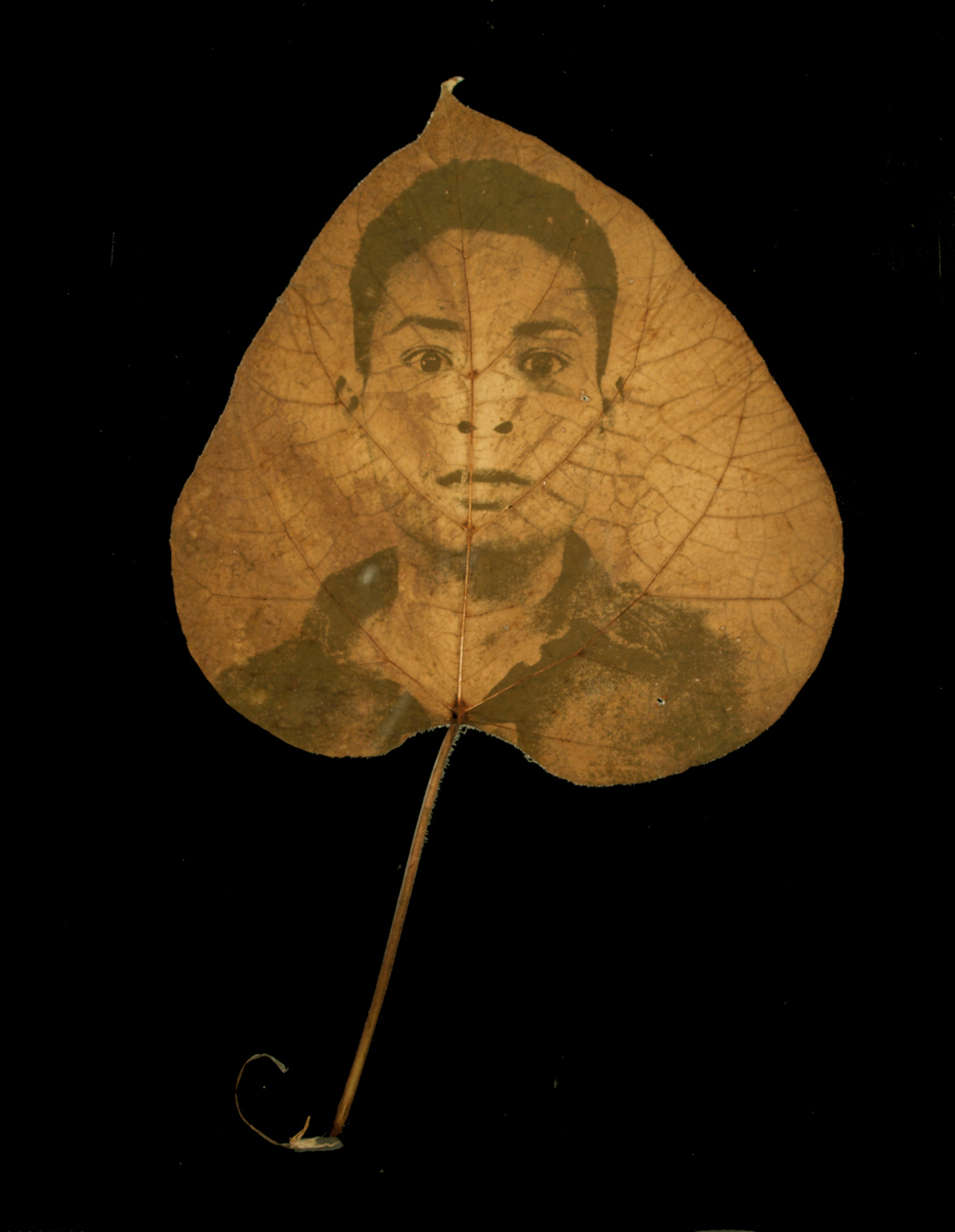 Found Portrait: Man 29, 2006