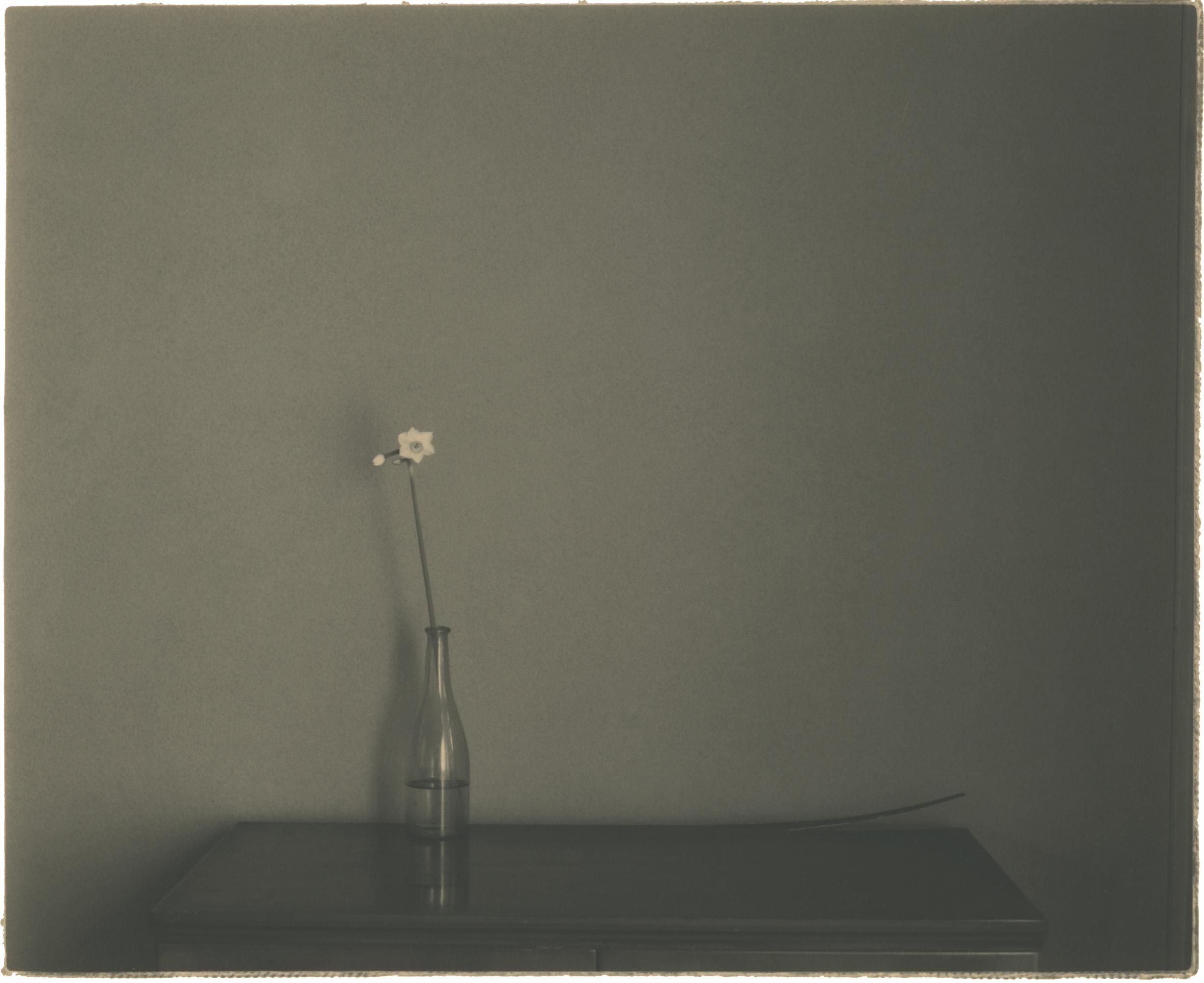 Masao Yamamoto -