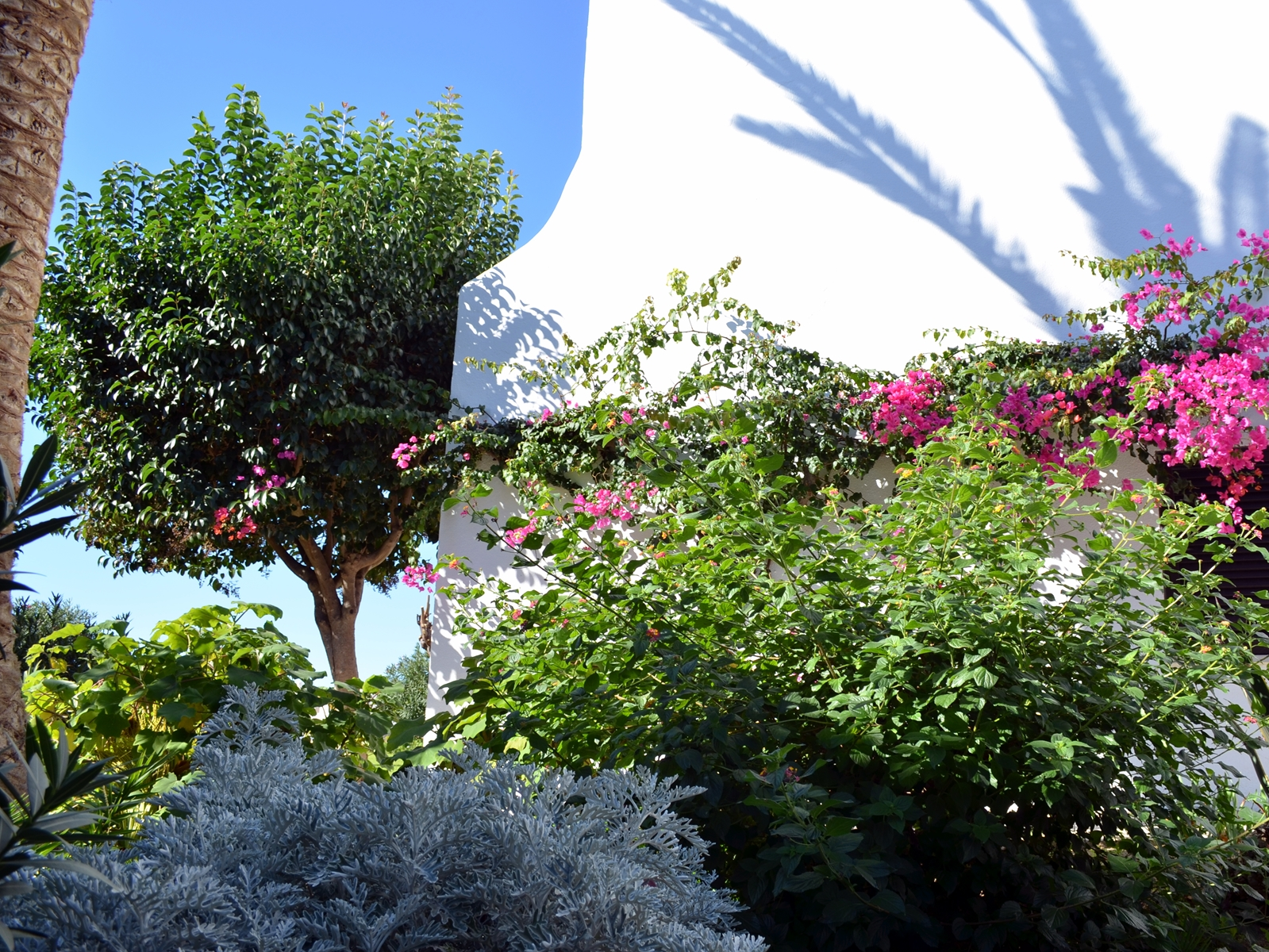 © Algarve Beach Pad (Resort)-011 (web).jpg