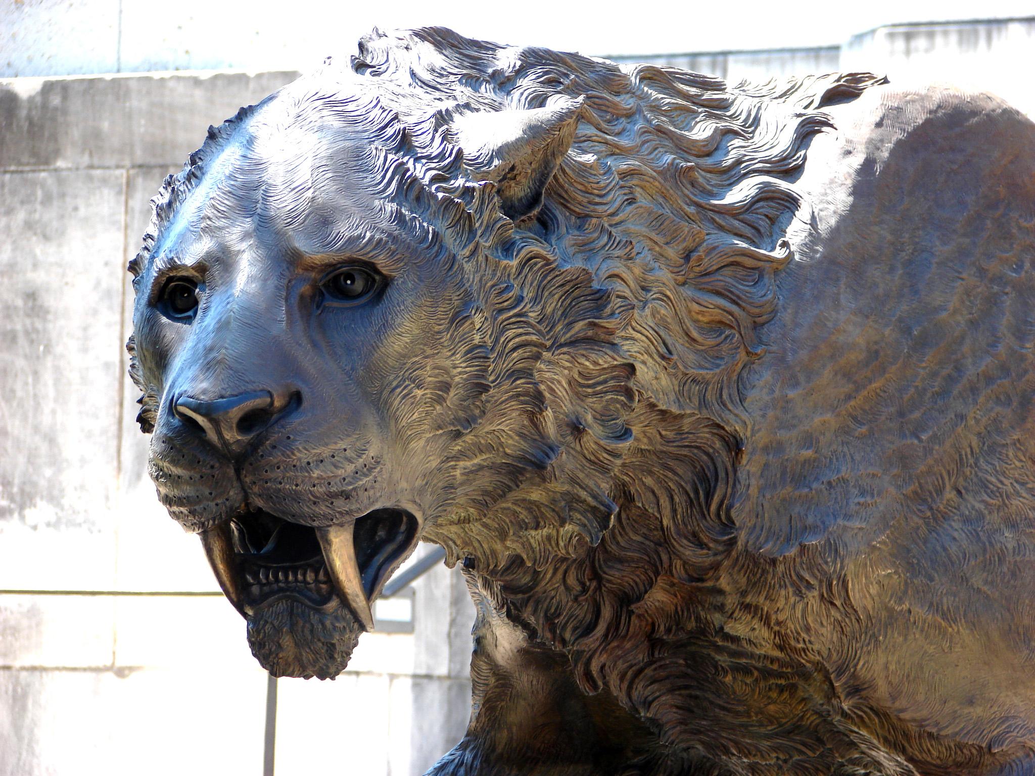 bronze-saber-cat-sculpture-john-maisano.jpg