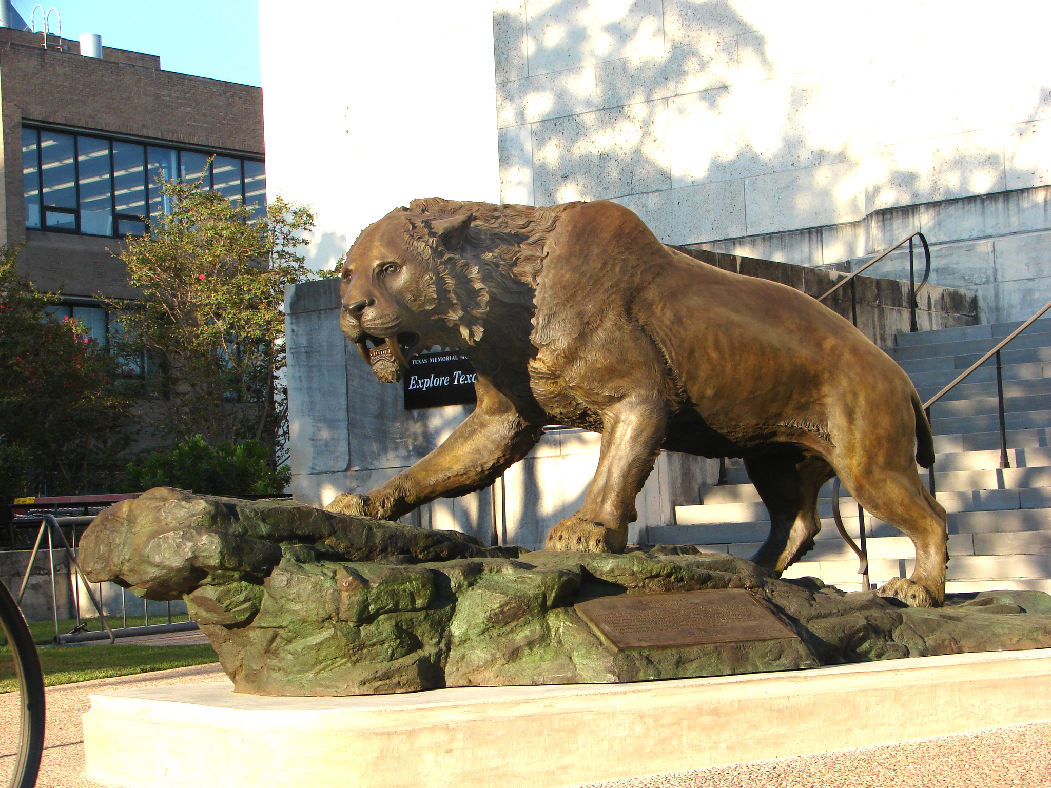 bronze-saber-cat-sculpture-john-maisano-1.jpg