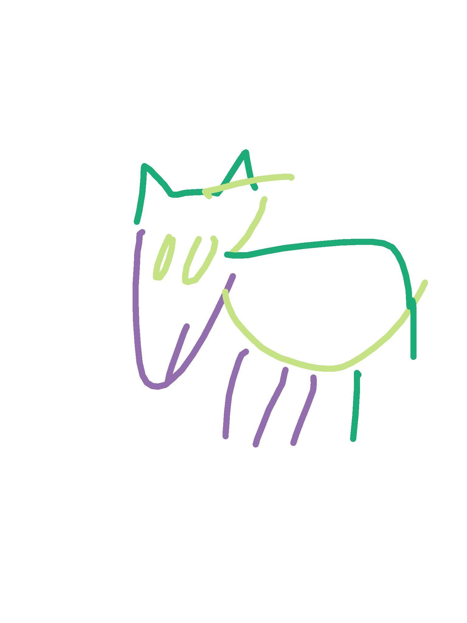 miniature horse.png