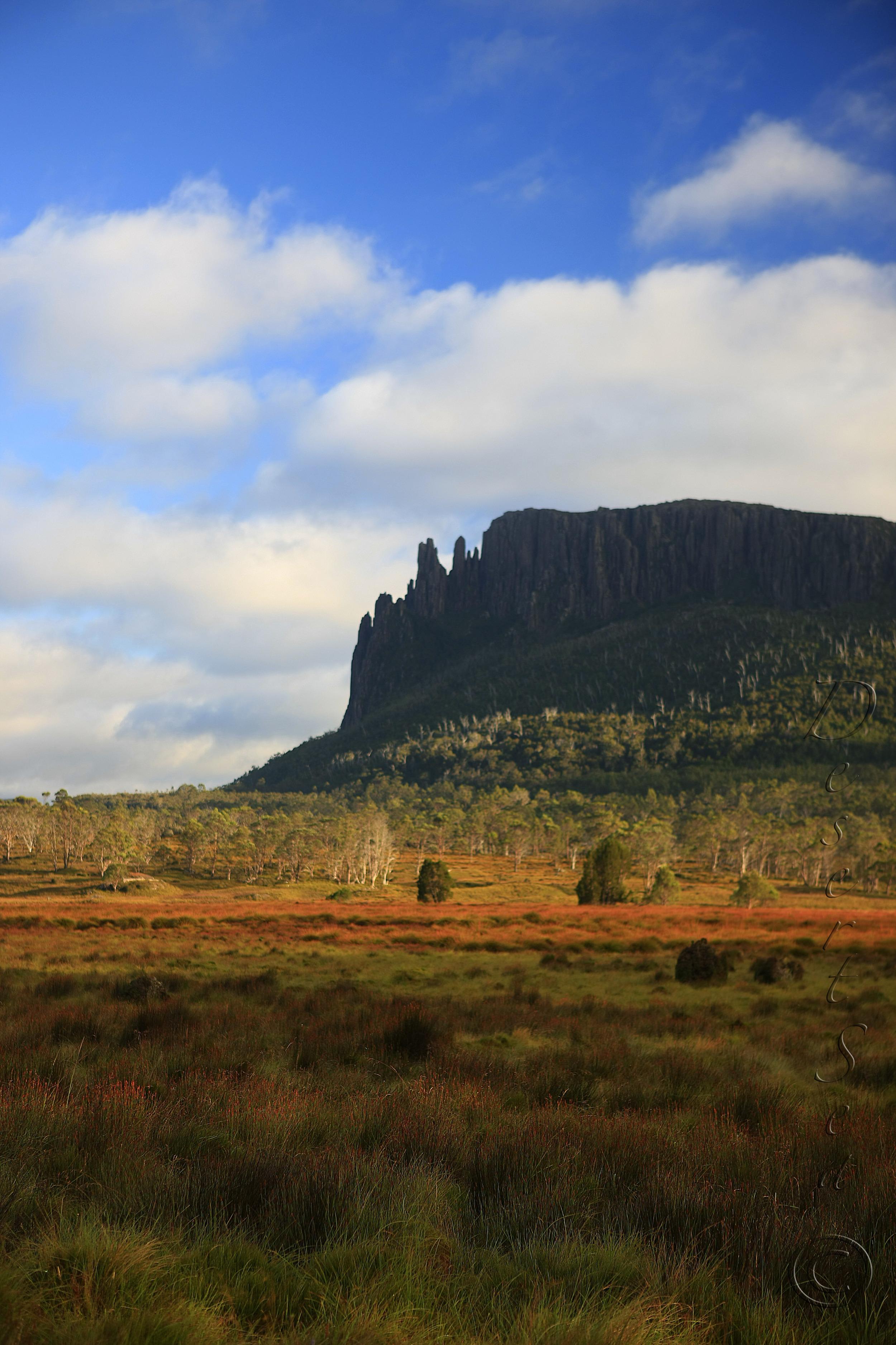 Mt Oakleigh.jpg