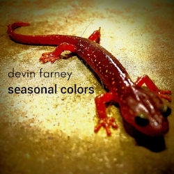 """Seasonal Colors - Pianist-composer Devin Farney creates music that is very difficult to classify since it reflects his wide range of interests and experiences in the music world. Classically trained, he earned his Masters in Music Composition from the San Francisco Conservatory of Music. While based in San Francisco, he has performed in Europe and in many different setings. Farney has written for television, performed rock and commercial music, is an expert at employing electronics and is also a top-notch jazz improviser. Prior to recording Season Colors, he had released an EP and two full albums of original music.On Seasonal Colors, Devin Farney plays all of the instruments. In addition to piano, electric piano, guitar, electric bass, drums and percussion, he utilizes synthesizers to achieve a variety of orchestral sounds including muted trumpet and trombone,and programming for the drums and some electronic beats.Seasonal Colors is an EP with five selections that on a whole does a fine job of displaying some of Devin Farney's musical talents. The opening """"Alphabet Soup"""" starts out a bit rockish with some heavy rhythms. Soon an insistent bassline and a catchy rhythmic theme take the spotlight, only to give way to the sound of a classic jazz piano trio. The episodic piece builds up well, has a fine piano solo and includes a variety of colorful sounds.""""Waltz for Abbey"""" is a jazz waltz for the trio with electronics added to give the ensemble additional texture and density. This melodic piece could be adopted by other musicians for it has a memorable theme.""""Sink Or Swim"""" utilizes a ten-note downward figure at its beginning that is hinted at throughout the piece. The performance has a mysterious and dramatic feel to it, includes some walking bass, and goes through many different episodes during the intriguing journey.""""Maroon in Crimson"""" begins as a peaceful ballad with the electric piano and trumpet in the forefront. Its main theme pops up two-thirds of the way through t"""