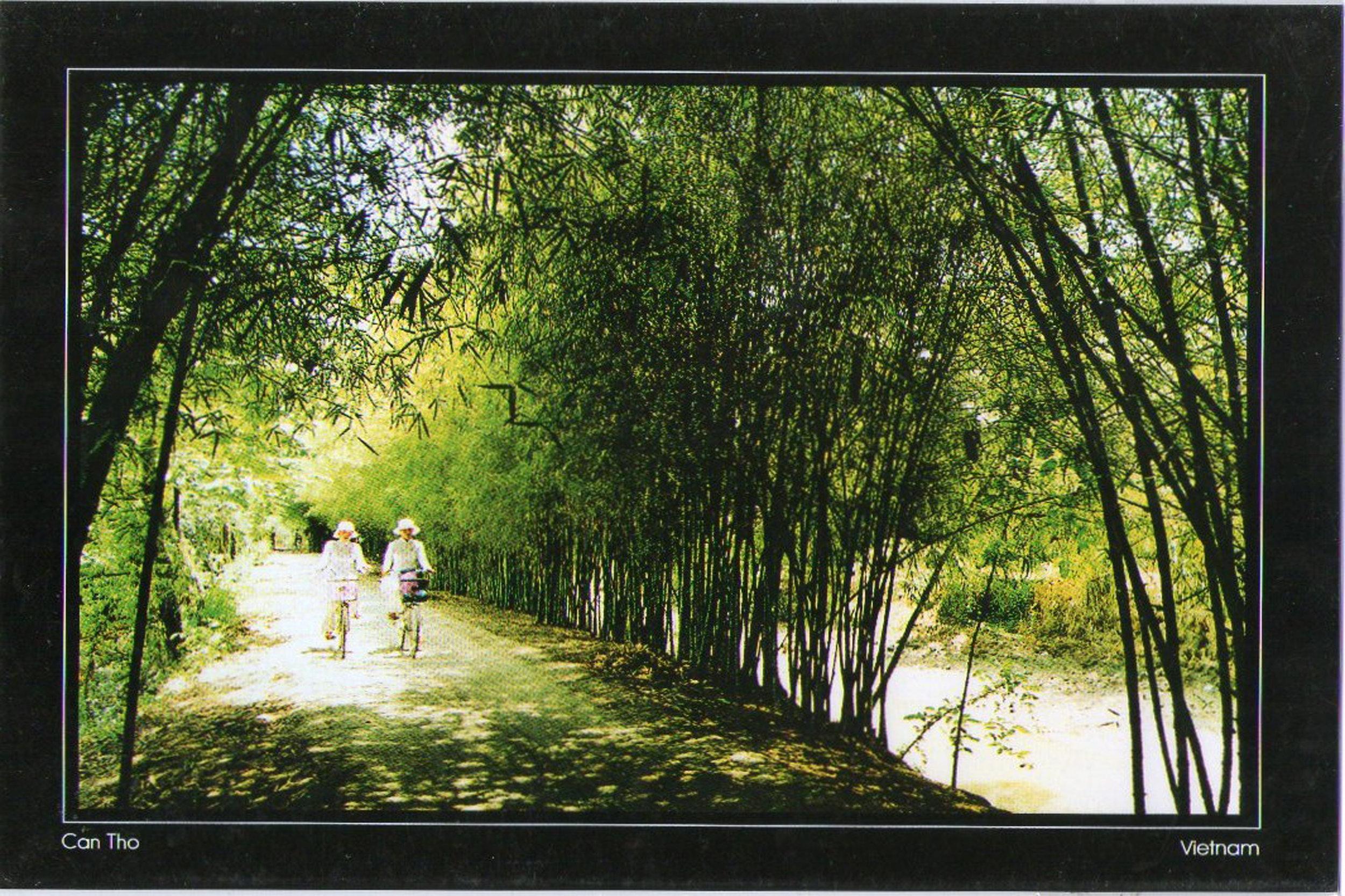 Postcard, Can Tho, Vietnam
