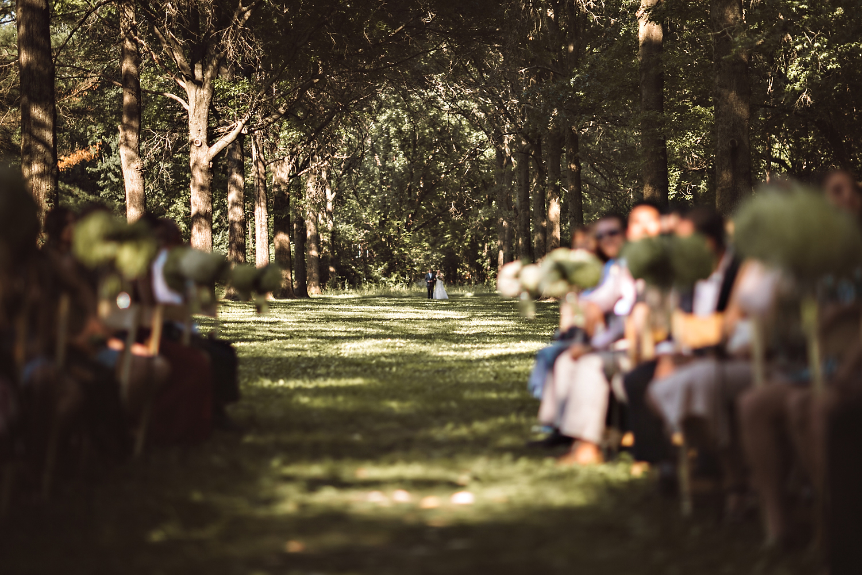 Rachel Gulotta Photography Forest Preserve Wedding-55.jpg