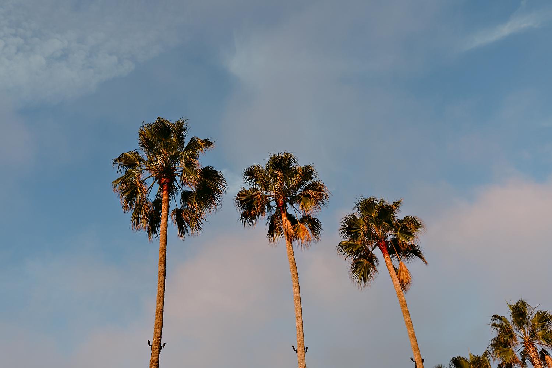 Rachel Gulotta Photography Santa Monica Beach Club Wedding-090.jpg