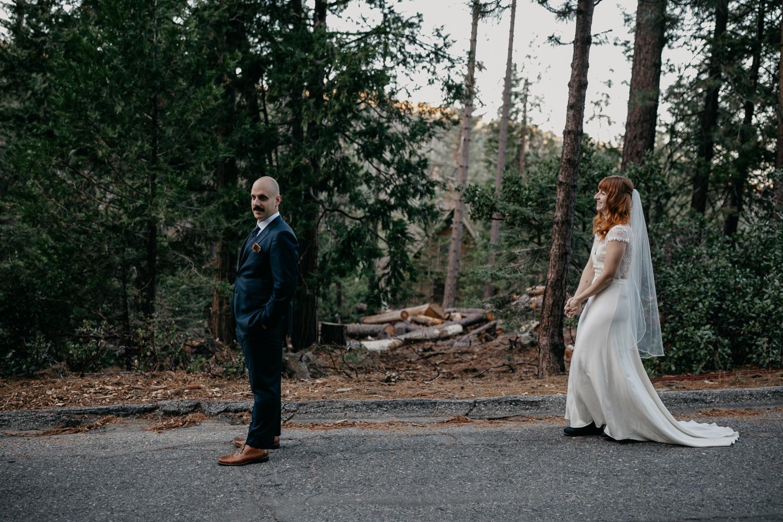 Yosemite Wedding Photographers-007.jpg