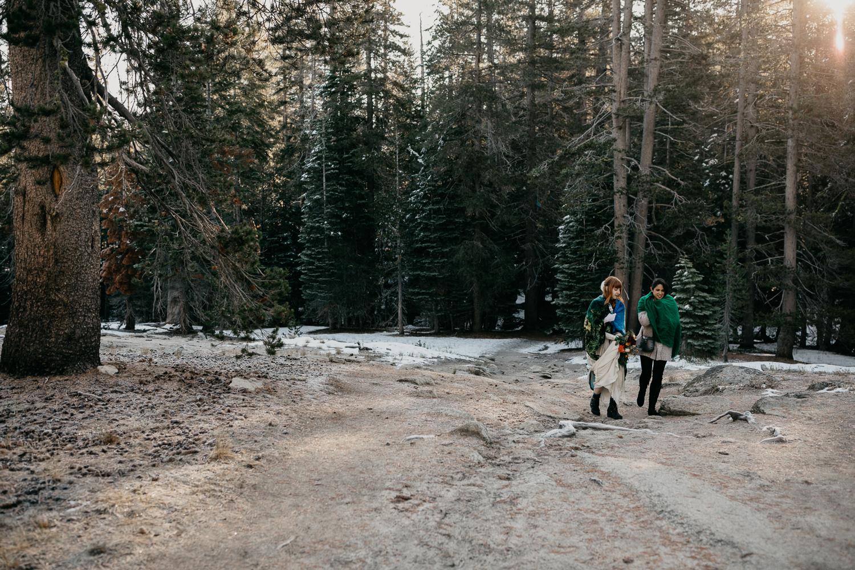 Yosemite Wedding Photographers-012.jpg