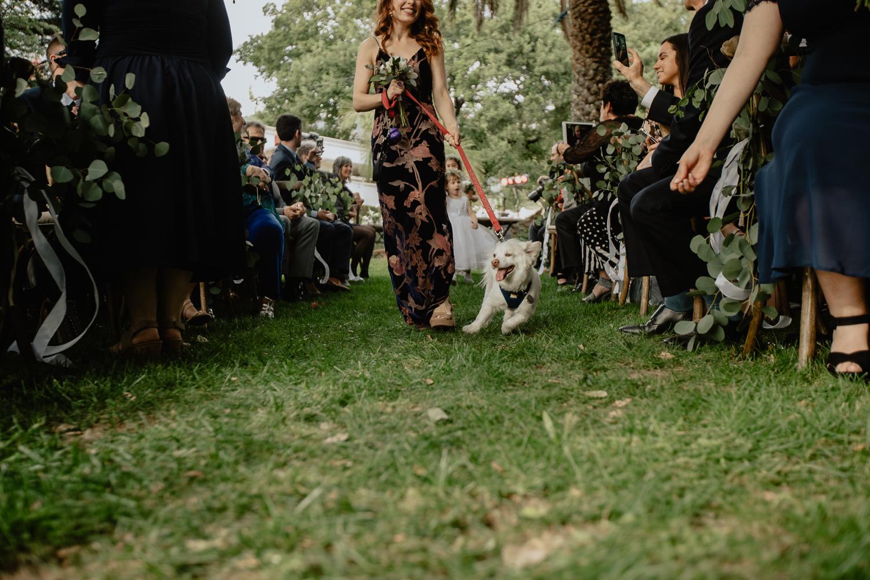 rachel gulotta photography los angeles wedding photographers-40.jpg