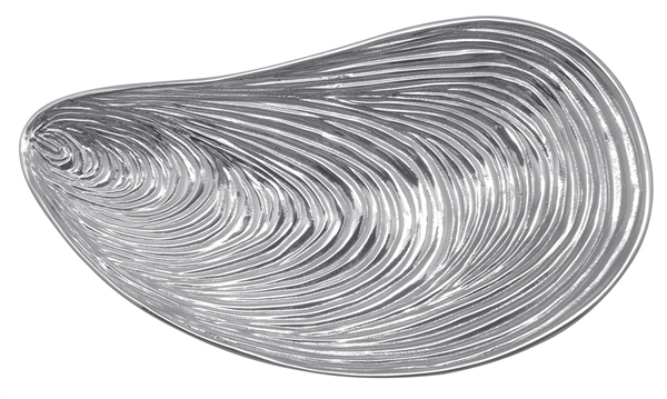 27295 - Large Mussel Serving Dish - $86 - Received