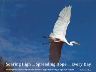Soaring High…Spreading Hope…Everyday