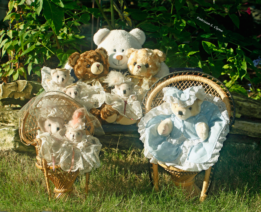 Our Special B.R. Bears Collection