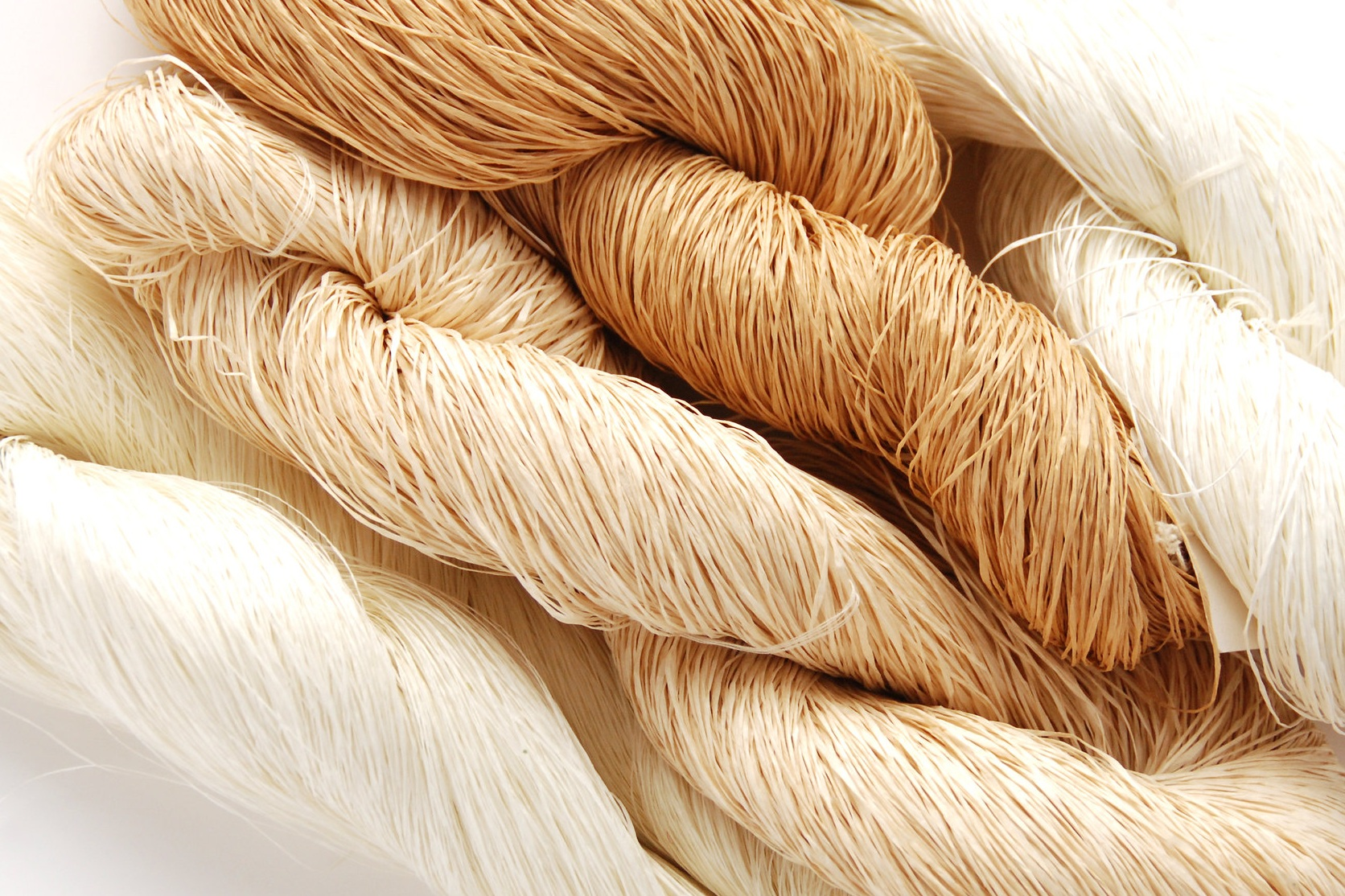 Native%26Co-Sasawashi-Workshop-sasawashi+yarn.jpg