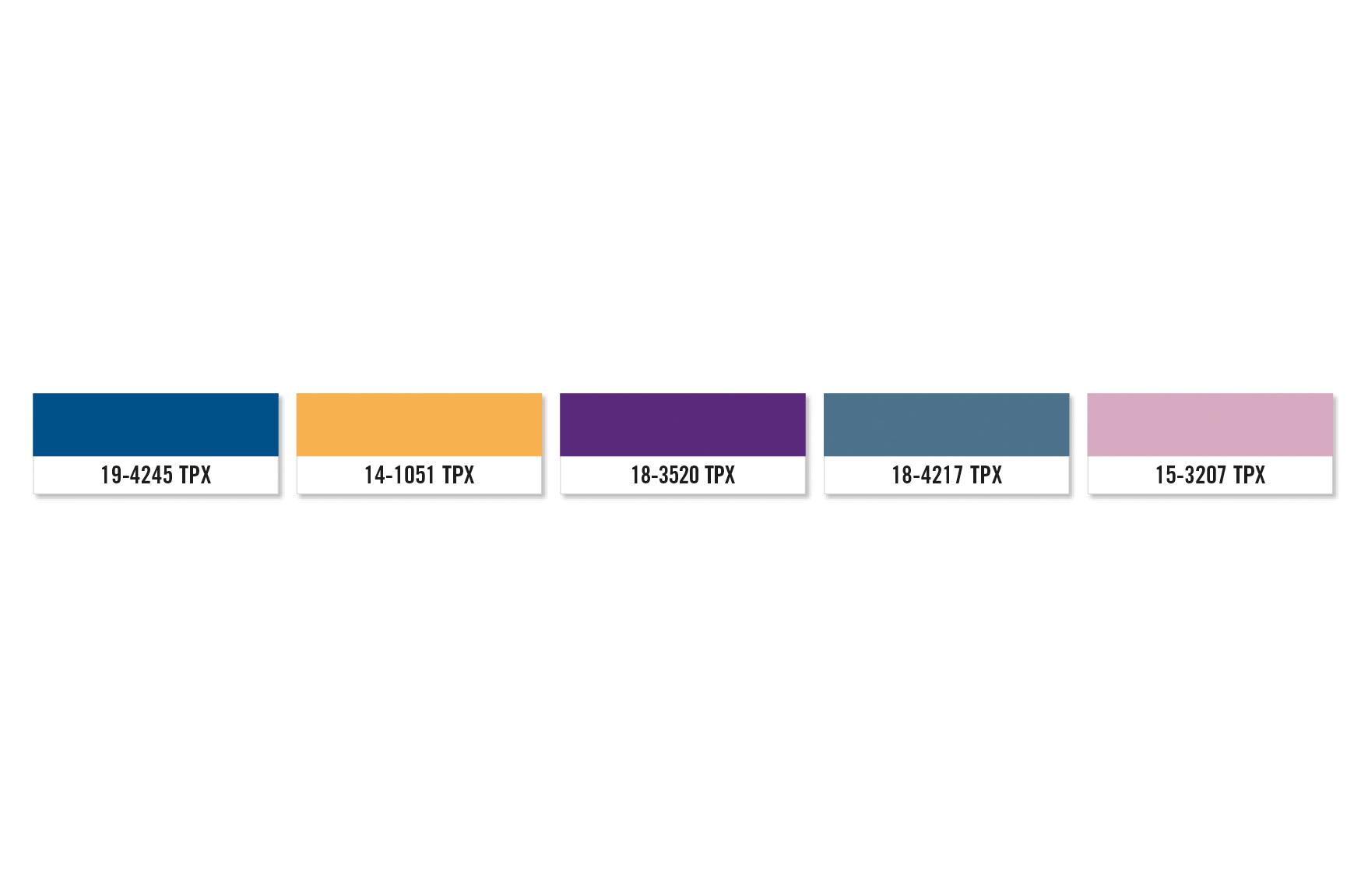 Color Palette_MV.jpg