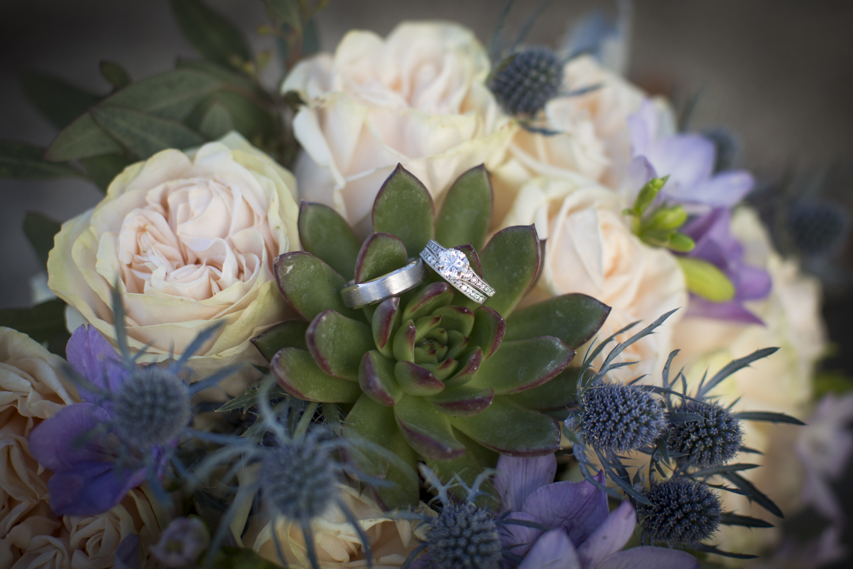 Swaner Wedding-1.jpg
