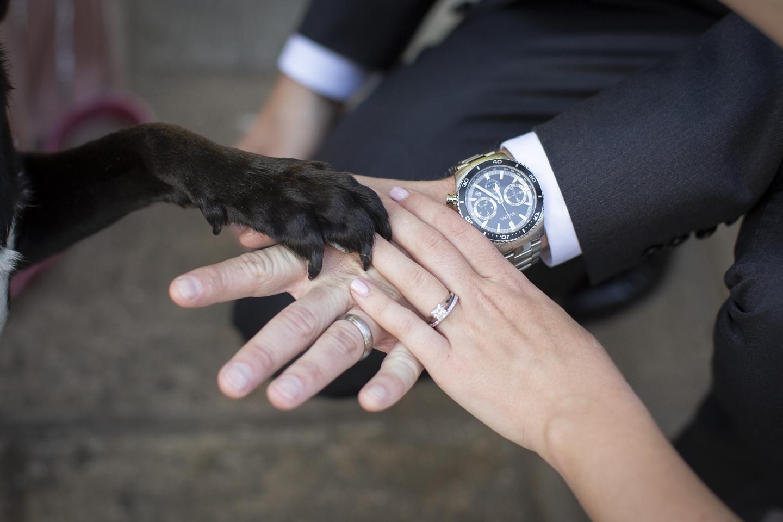 Vaughn Wedding-9.jpg